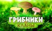 'Грибники и Кланы' - Скорее в лес – там столько грибов! Наберите полную корзинку и приготовьте гостинцы! Объединяйтесь с другими грибниками в кланы, общайтесь в чате, помогайте друг другу и станьте ...